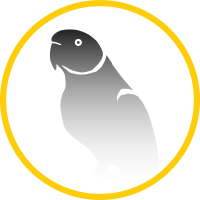 Lost and Found Bird Australia | Lost Pet Finders