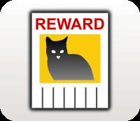 Large reward lost pet
