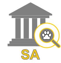 Lost Pets at SA Council Pounds