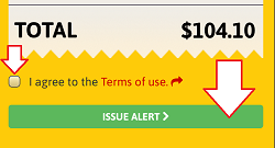 Custom Alert - Proceed to payment